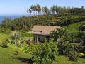 Hale Ke Aloha