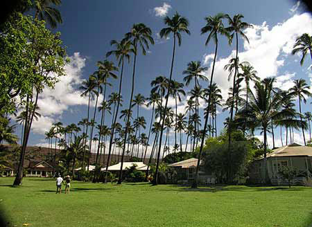 aston listings hotel hawaii resortqu cottage def cottages exterior waimea plantation formerly
